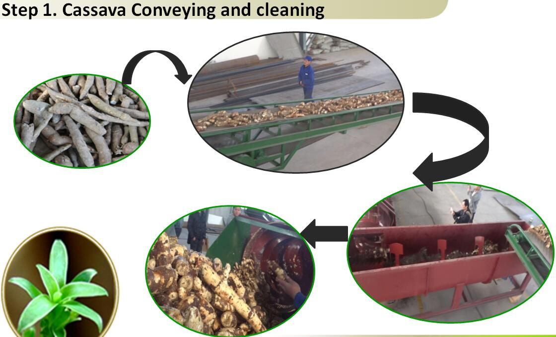 The price of Cassava peeling machine.jpg